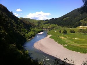 Te-Apiti-Manawatu-Gorge-walking-track-view-to-Woodville-Ferry-Reserve-ManawatuNZ.co_.nz_